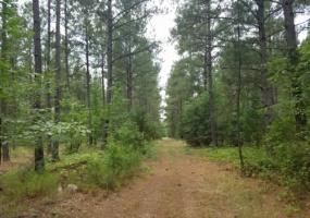 Greenwood County,Land,1068