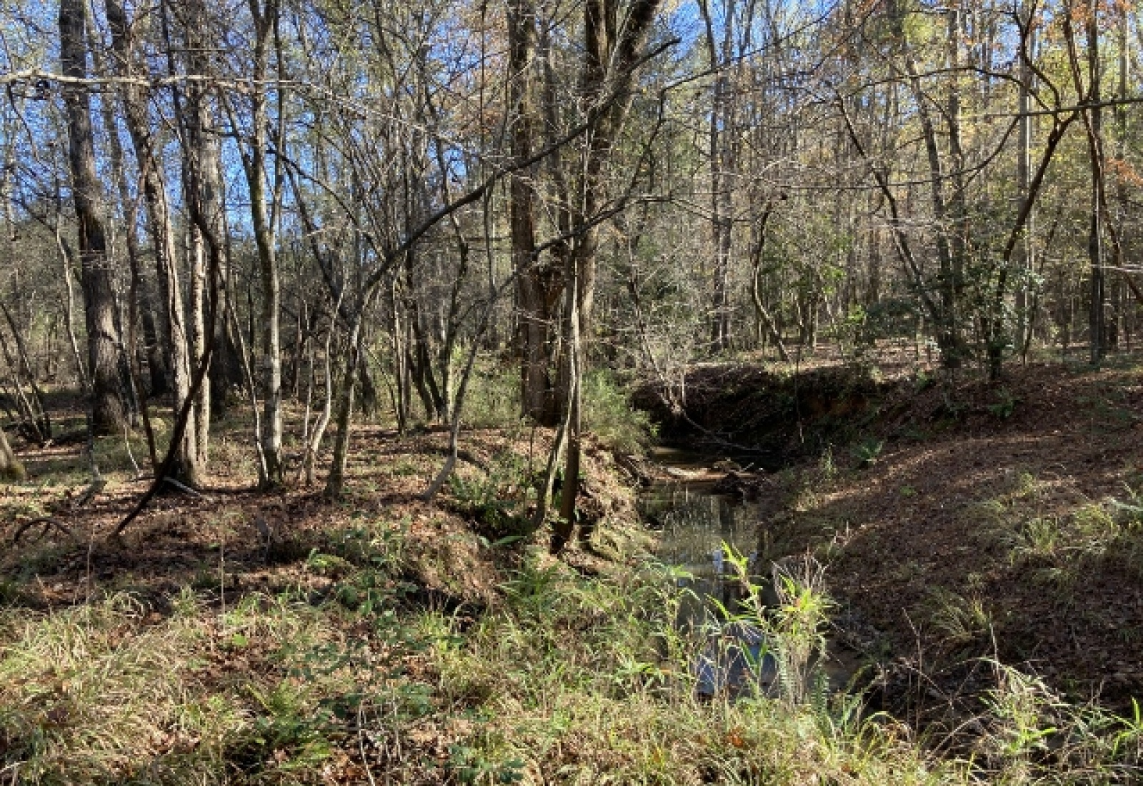 Newberry County, ,Land,Active,1071