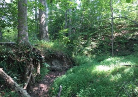 Laurens County, ,Land,Sold,1046