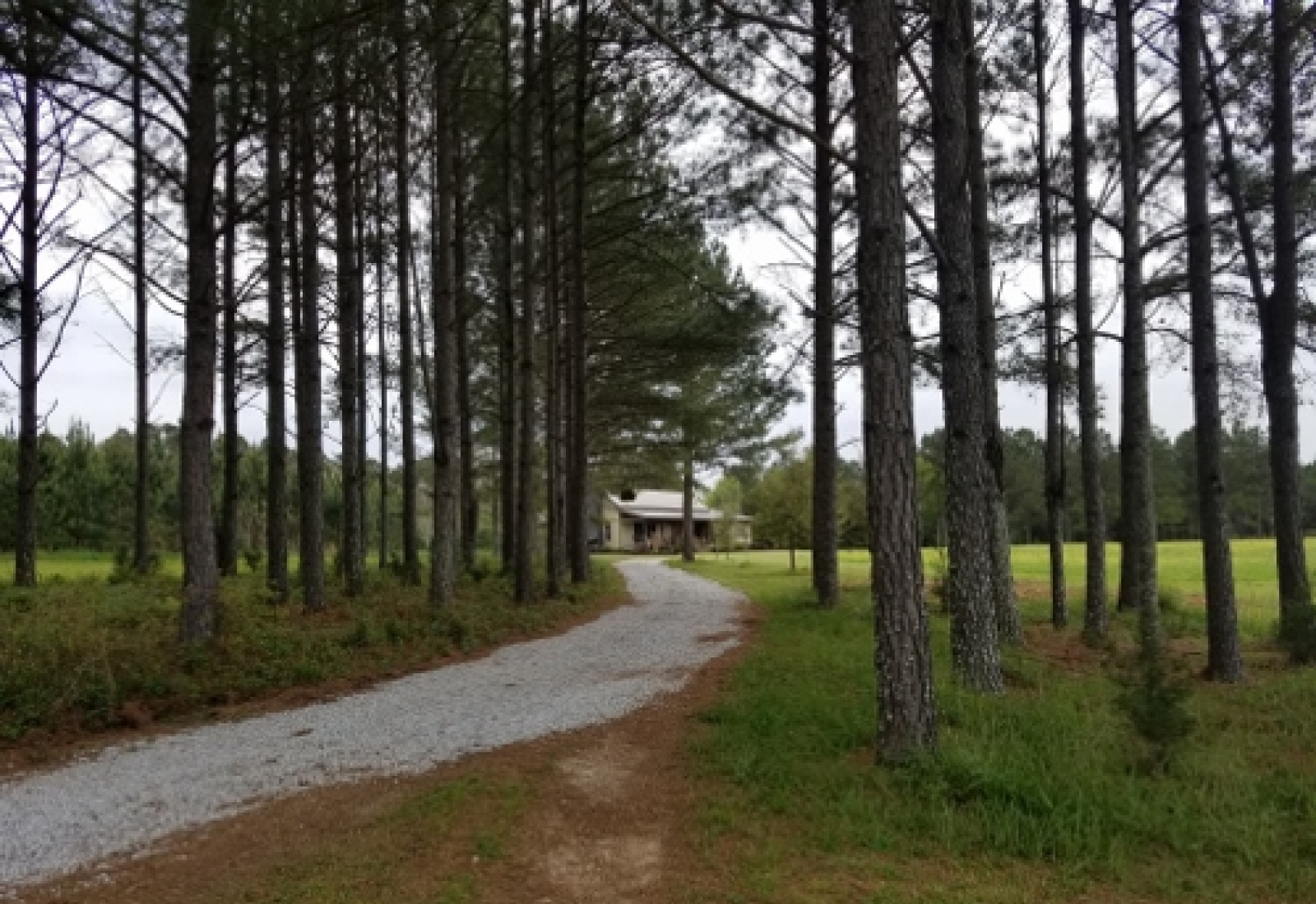 Greenwood County, ,Land,Sold,1059