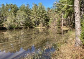 Abbeville County, ,Land,Contract Pending,1070