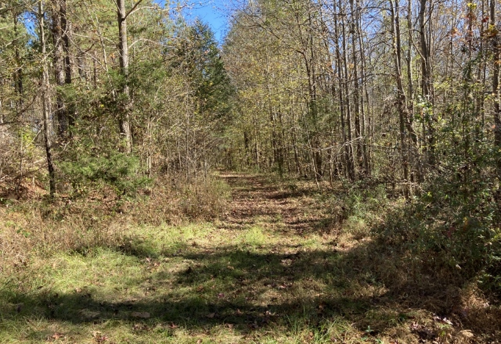 Abbeville County, ,Land,Sold,1070